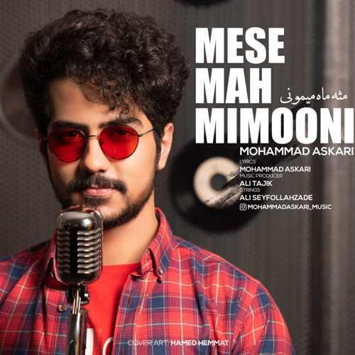 دانلود موزیک جدید مثه ماه میمونی از محمد عسکری