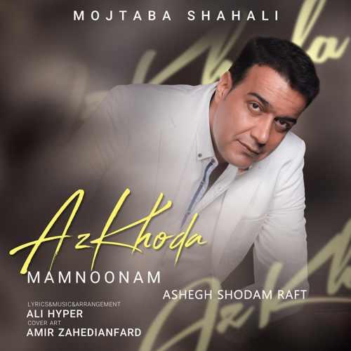 دانلود موزیک جدید عاشق شدم رفت از مجتبی شاه علی
