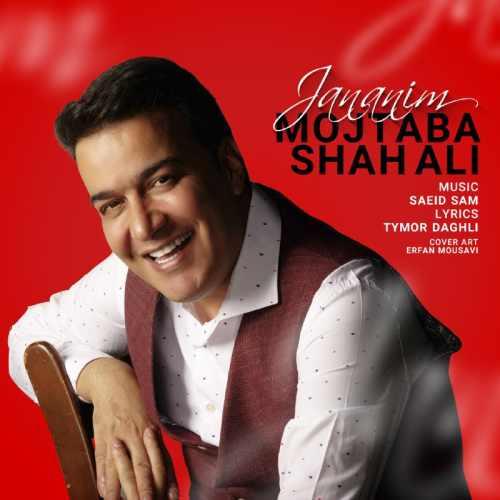 دانلود موزیک جدید جانانیم از مجتبی شاه علی