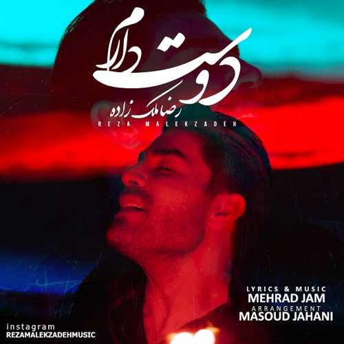 دانلود موزیک جدید دوست دارم از رضا ملک زاده