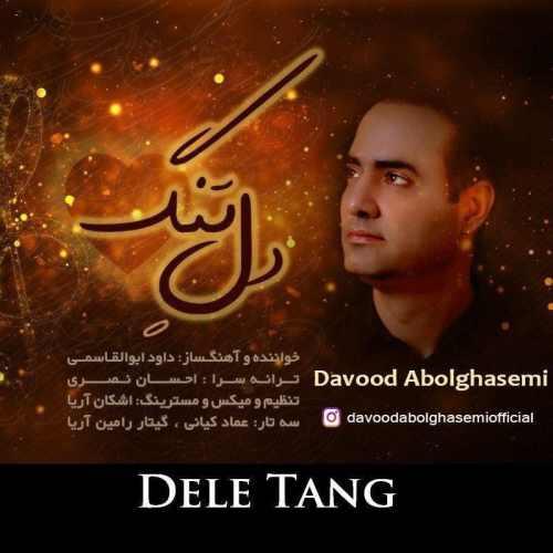 دانلود موزیک جدید دل تنگ از داوود ابوالقاسمی