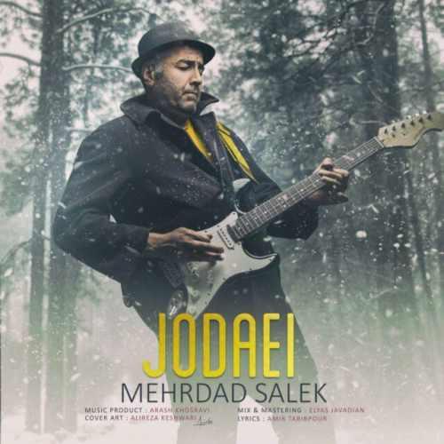 دانلود موزیک جدید جدایی از مهرداد سالک