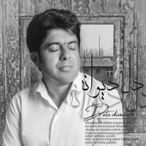 دانلود موزیک جدید دل دیوانه از عباس پسندیده