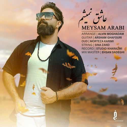 دانلود موزیک جدید عاشق نمیشم از میثم عربی