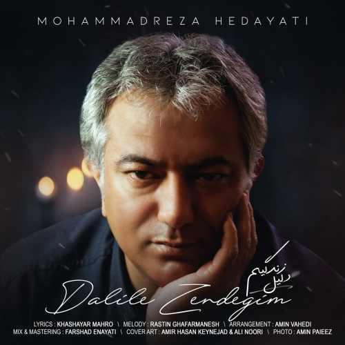 دانلود موزیک جدید دلیل زندگیم از محمدرضا هدایتی