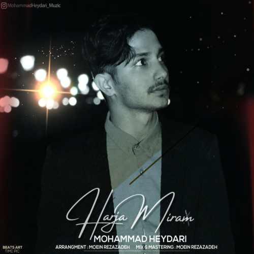 دانلود موزیک جدید هرجا میرم از محمد حیدری