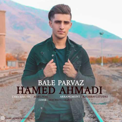 دانلود موزیک جدید بال پرواز از حامد احمدی