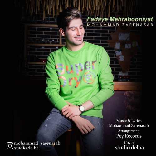 دانلود موزیک جدید فدای مهربونی هات از محمد زارع نسب