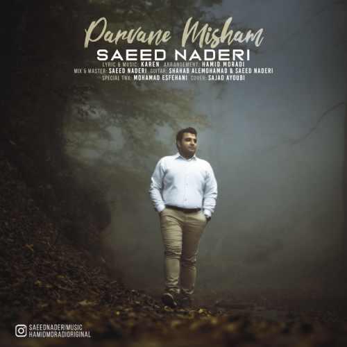 دانلود موزیک جدید پروانه میشم از سعید نادری