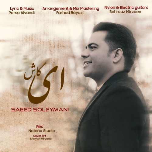 دانلود موزیک جدید ای کاش از سعید سلیمانی