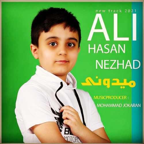 دانلود موزیک جدید میدونی از علی حسن نژاد