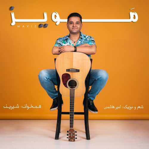 دانلود موزیک جدید مویز از امیر هاشمی