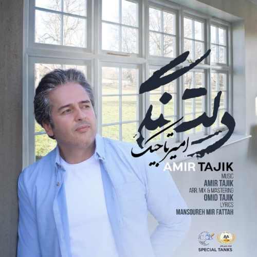 دانلود موزیک جدید دلتنگی از امیر تاجیک