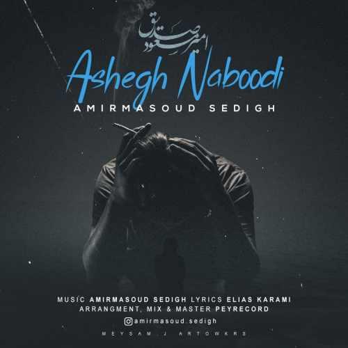 دانلود موزیک جدید عاشق نبودی از امیر مسعود صدیق