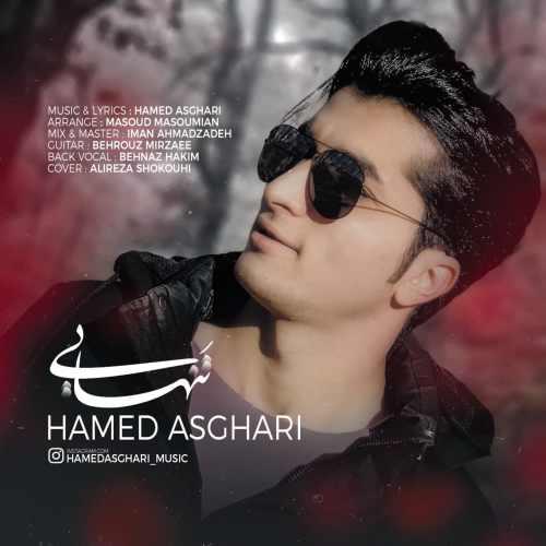 دانلود موزیک جدید تنهایی از حامد اصغری