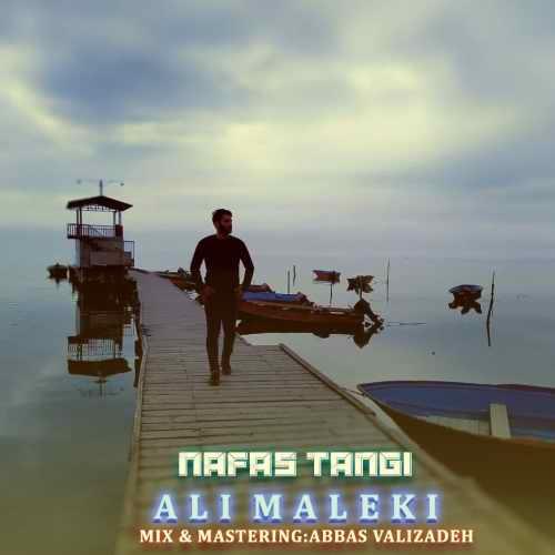 دانلود موزیک جدید نفس تنگی از علی ملکی